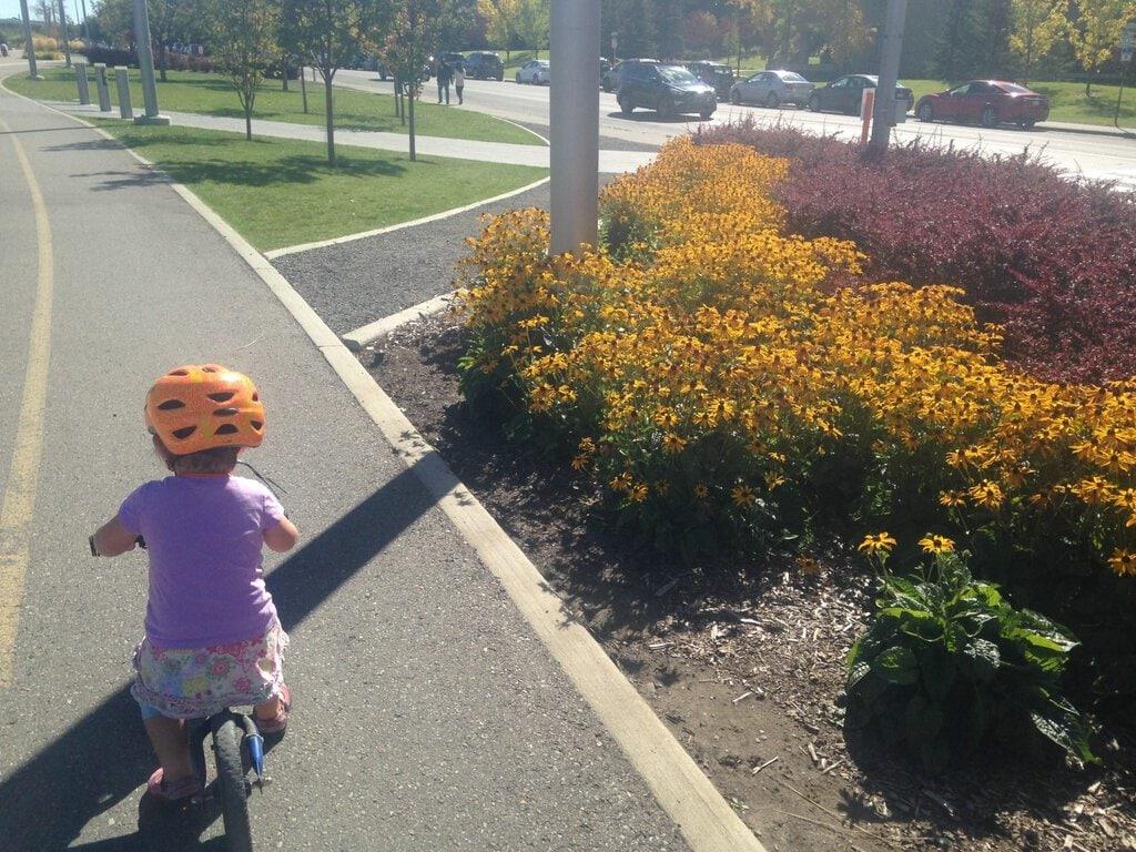 bike-friendly Calgary