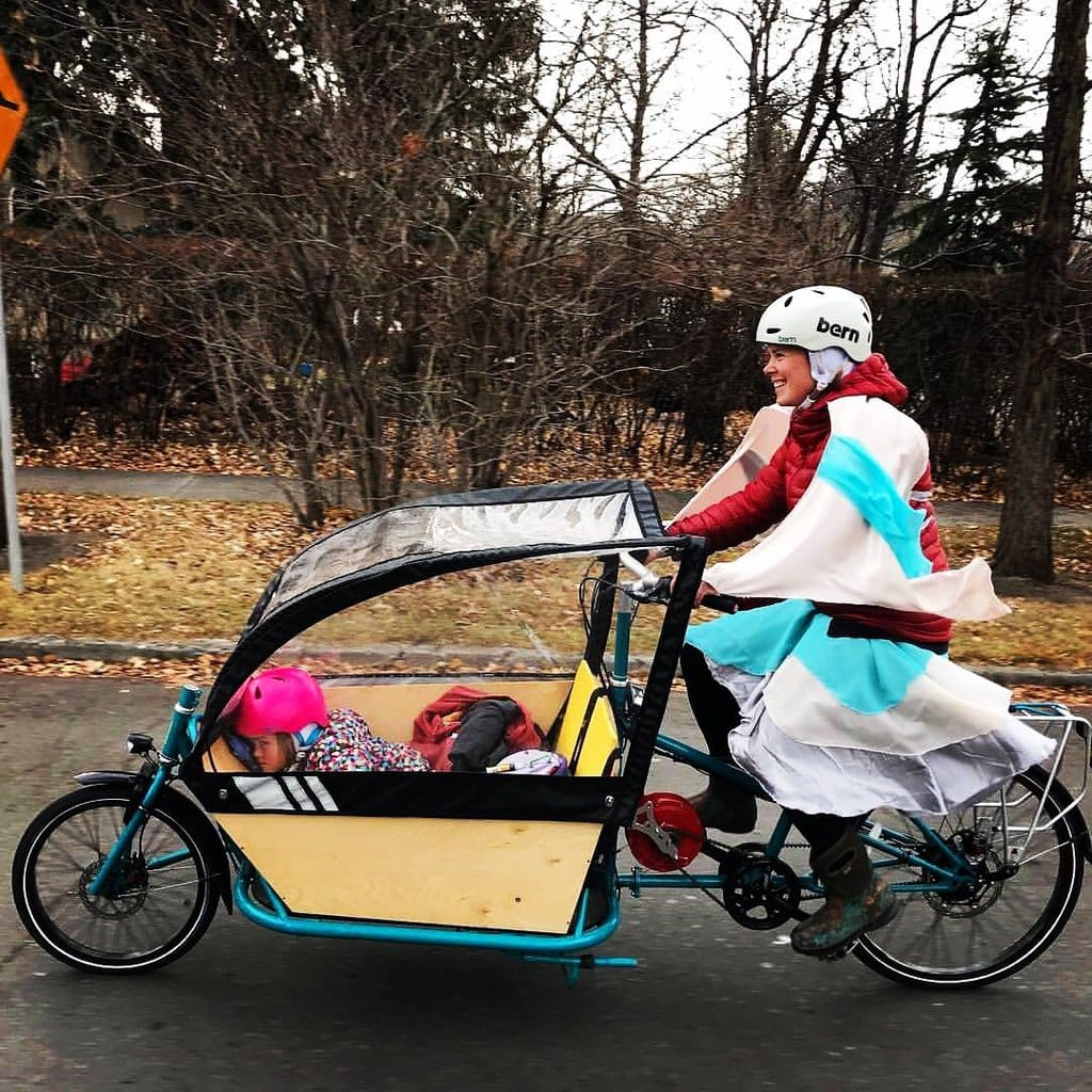 Family Bike: Bakfiets or Long-John Cargo Bike