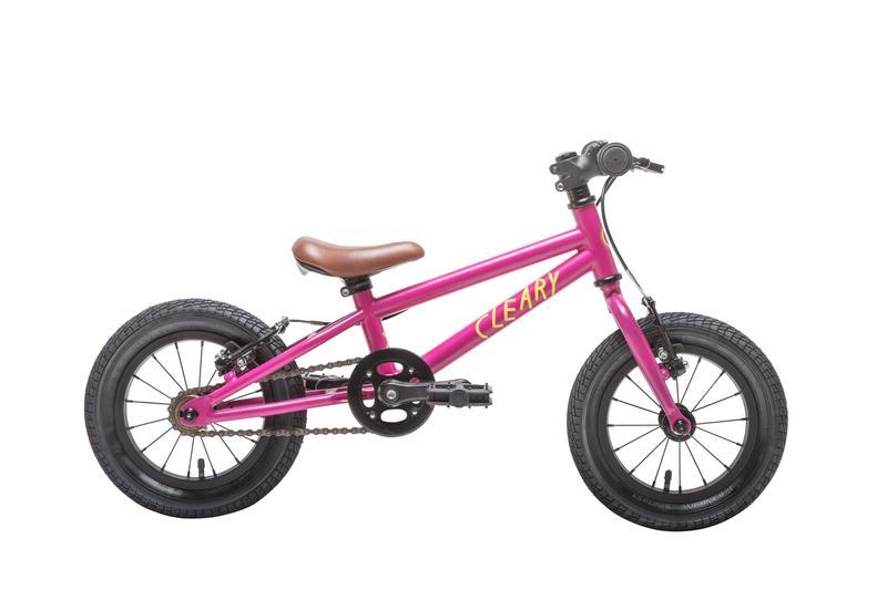 Starter Pedal Bike